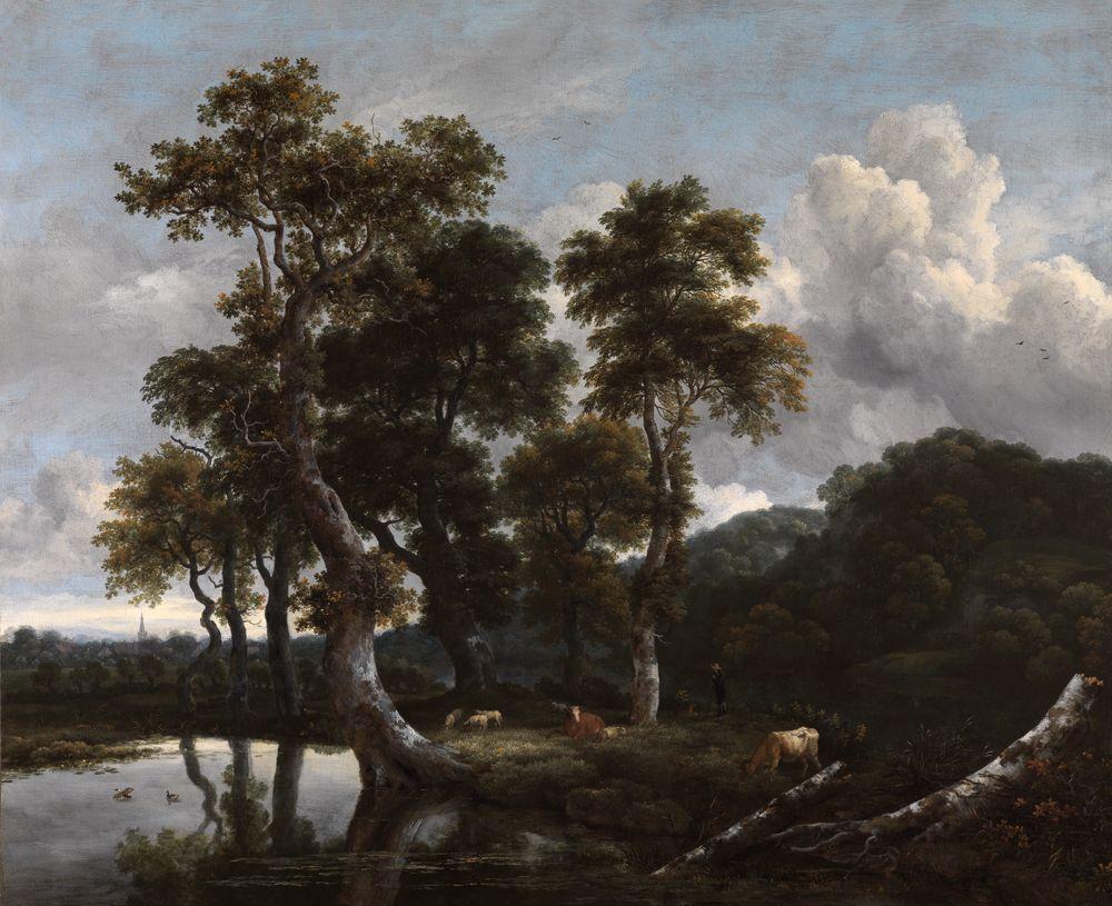 Grosse Baumgruppe am Wasser