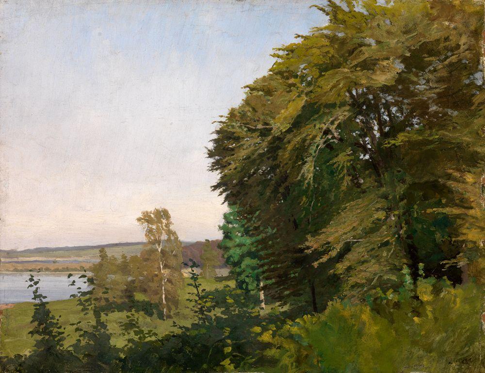 Landschaft aus Schleswig-Holstein