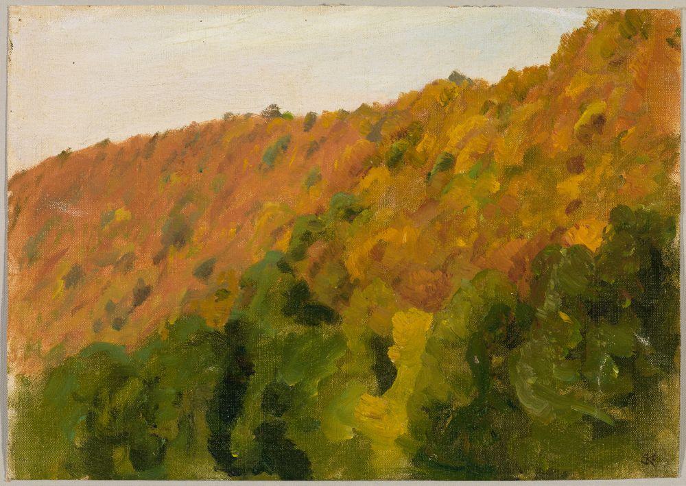 Herbstwald im Bärental