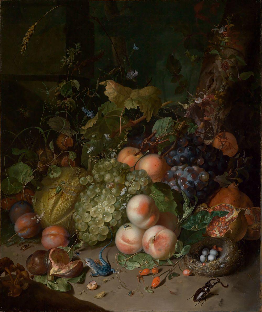 Fruchtstilleben mit Hirschkäfer und Nest