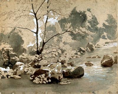 Waldbach mit Felsblöcken