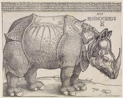 Rhinocerus (Das Rhinozeros)