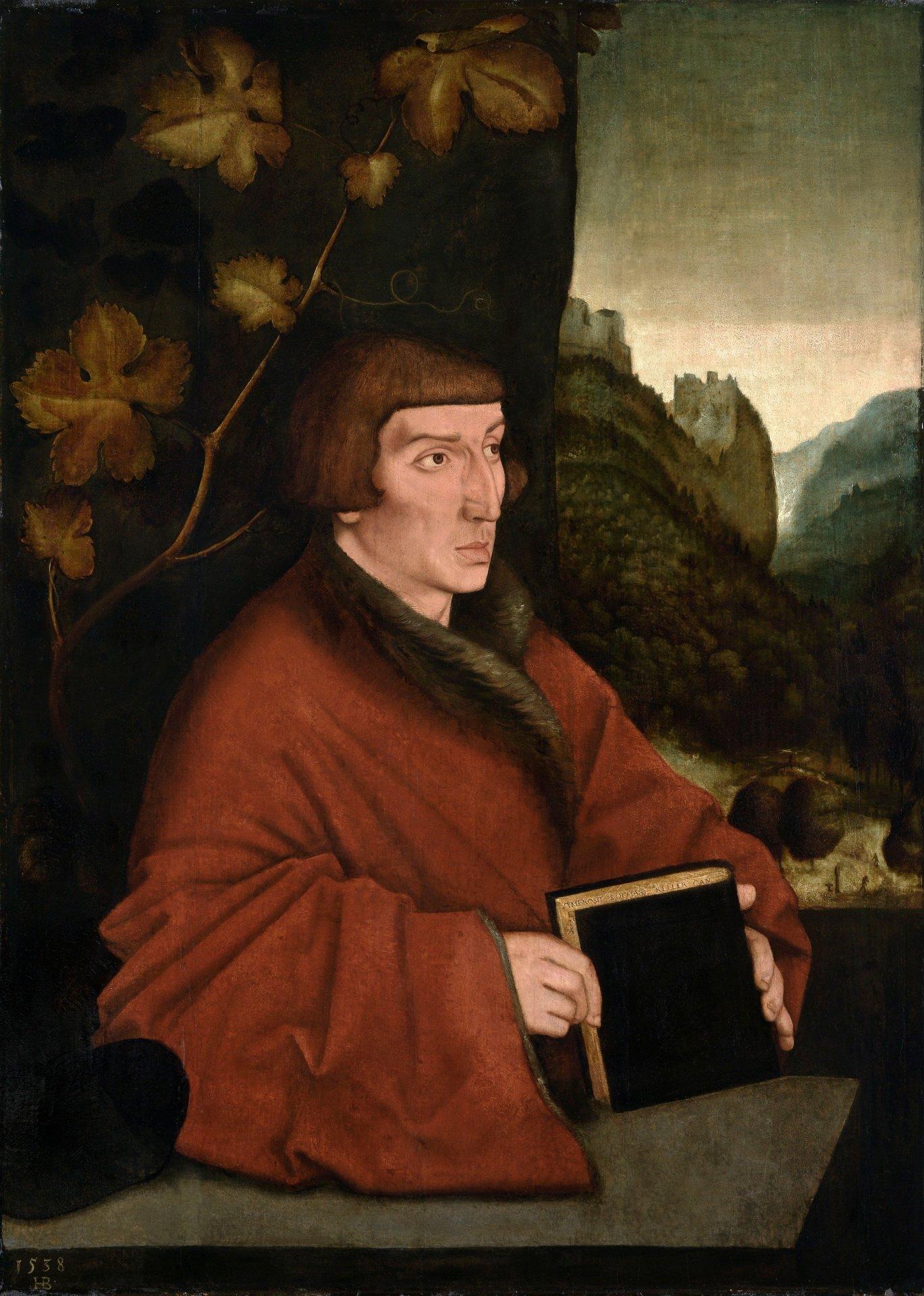 Abbildung des Werks Bildnis des Kanonikers Ambrosius Volmar Keller des Renaissance-Künstlers Hans Baldung Grien aus dem Jahr 1538