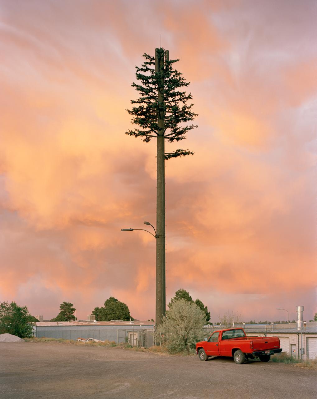 Abbildung einer Fotografie von Robert Voit, auf der im Sonnenuntergang ein als Baum getarnter Mast zu sehen ist.